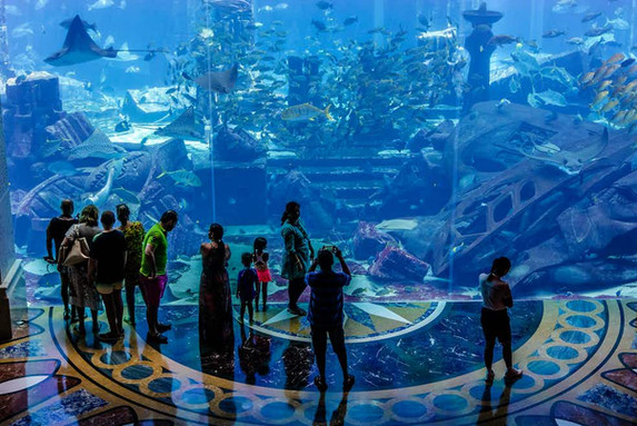 THE LOST CHAMBERS AQUARIUM Aquarium with an Atlantis theme