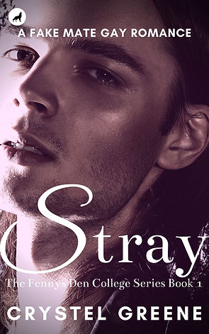 Stray Cover Oct 20 das beste.jpg