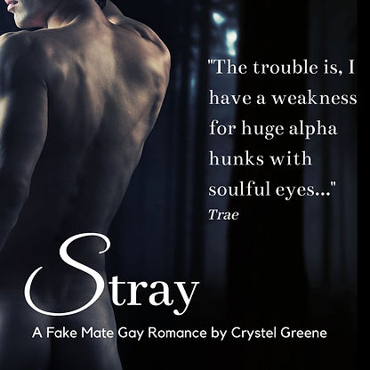 The trouble is... Stray.jpg