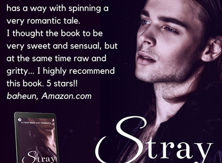 STRAY is on sale for Christmas!