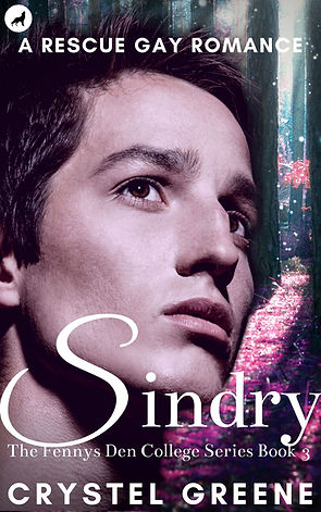 Amazon Cover Sindry Purple Forest Vignet
