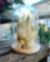 Cloche en fleurs séchées 🤩 taille L _#f