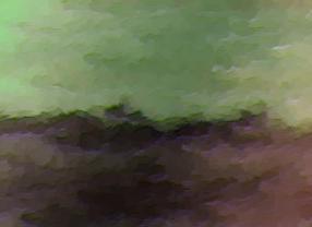 gallery 1 (4).jpg