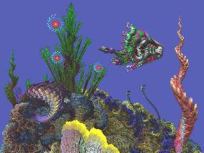 gallery 1 (5) Horse Head Dragon Fish.jpg