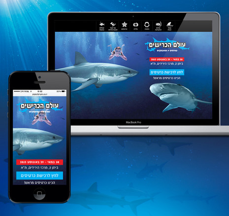 sharks-800_01.jpg