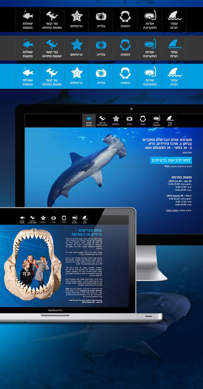 sharks-800_03