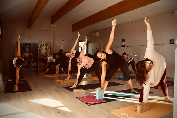 Stage Yoga et Saisons - Ose Yoga