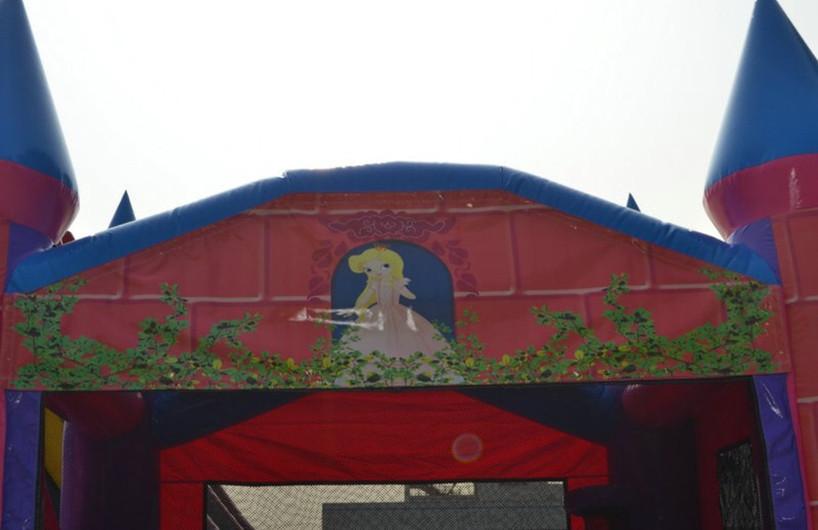 Princess Bounce House Combo
