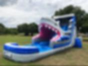 Shark Slide.bmp
