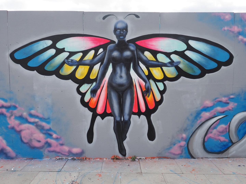 Butterfly Hybrid