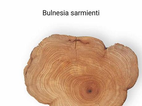 Guaiac_ağacı___diğer_ismi_Palo_Santo_