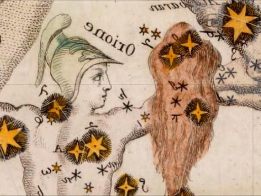 Kraliçe  Artemisia  ve antik  misk otu