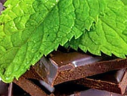 Çikolata nanesi