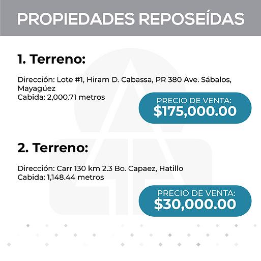 PROPIEDADES REPOSEIDAS 1.png