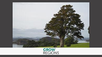 Grow regions.jpg