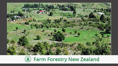 NZ Farm Forestry November 2007.jpg