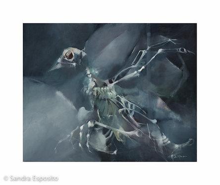 Uccello scheletro