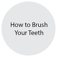 how to brush your teeth.png