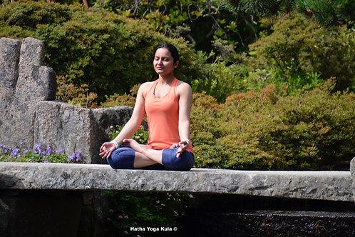 Mahashivaratri Chant Meditation