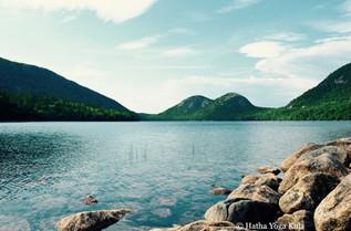 Scenic Acadia