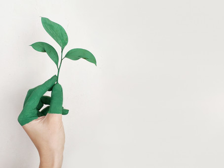 Sustainable conferences - a fad or a coming 'norm'?
