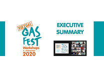 Gas Fest Virtual Workshop_summary report