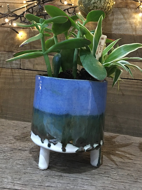 Handmade Stoneware Ceramic Pot with Succulents