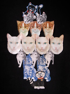 Cat Litter Cats 2010