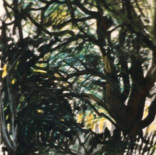 Baum in Einöd 3 1991