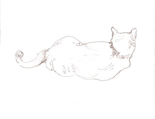 Untitled (Alert Cat from Behind) 2000