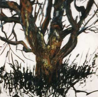 Baum in Einöd 2 1991