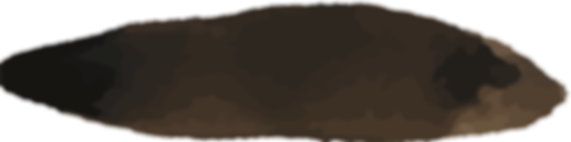 brownish-400-100.png