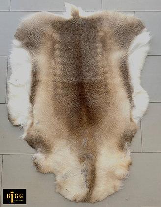 Reindeer Hide Medium