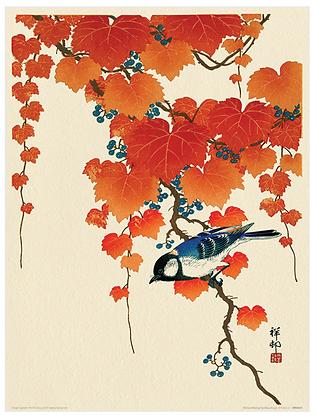 30x40 cm Red Ivy Print