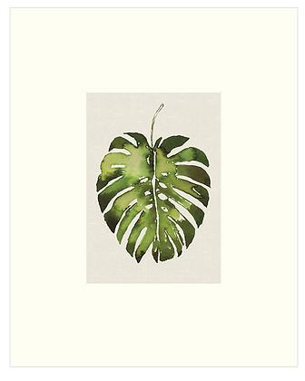 24x30cm Tropical Leaf Print With Mount