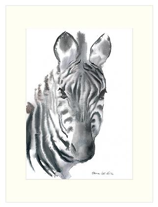 30x40 cm 'Zebra' Print With Mount