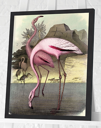 30x40cm Framed Flamingo Print