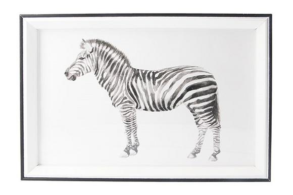 20x30cm Zebra Framed Print