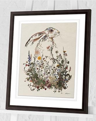 50x40cm Hiding Hare Framed Print