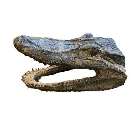 Decorative Faux Croc Head
