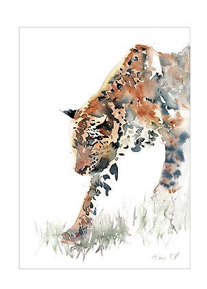 60x80 cm 'Furtif' Print