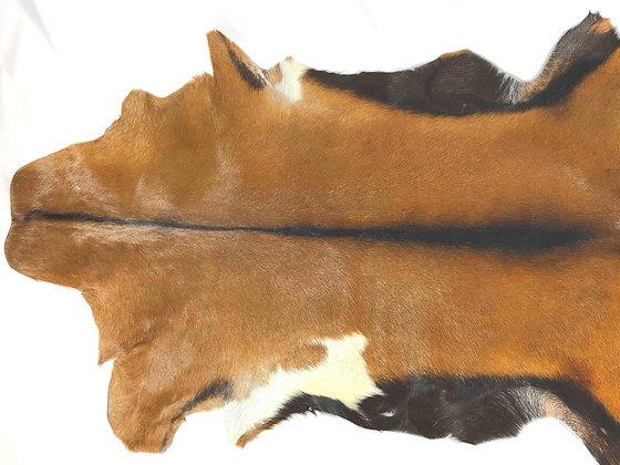 Goat SkinTan / Dark Brown / White