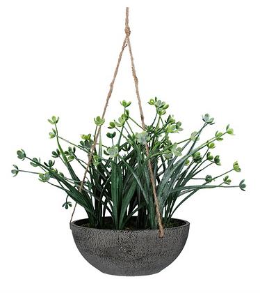 Hanging Japanese Wax Flower 38cm