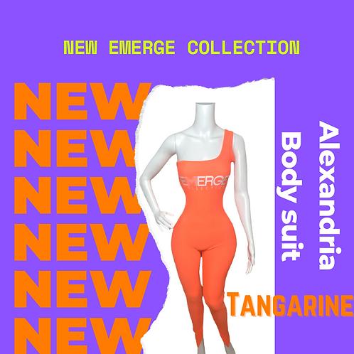 Alexandria Body Suit (Tangarine)