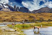 pacote turismo torres del paine patagonia