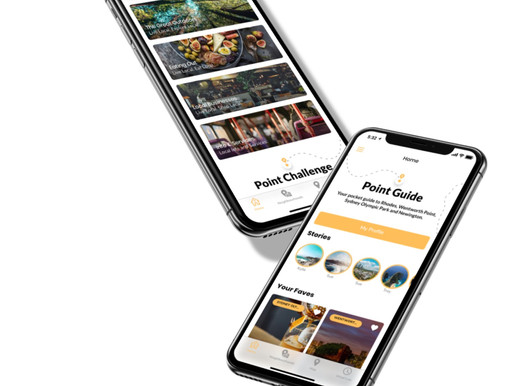 Point Guide: About the App