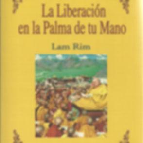 la-liberacic3b3n-en-la-palma-de-tu-mano.