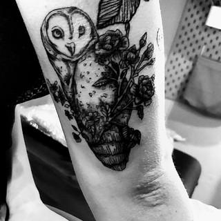 Owl flash