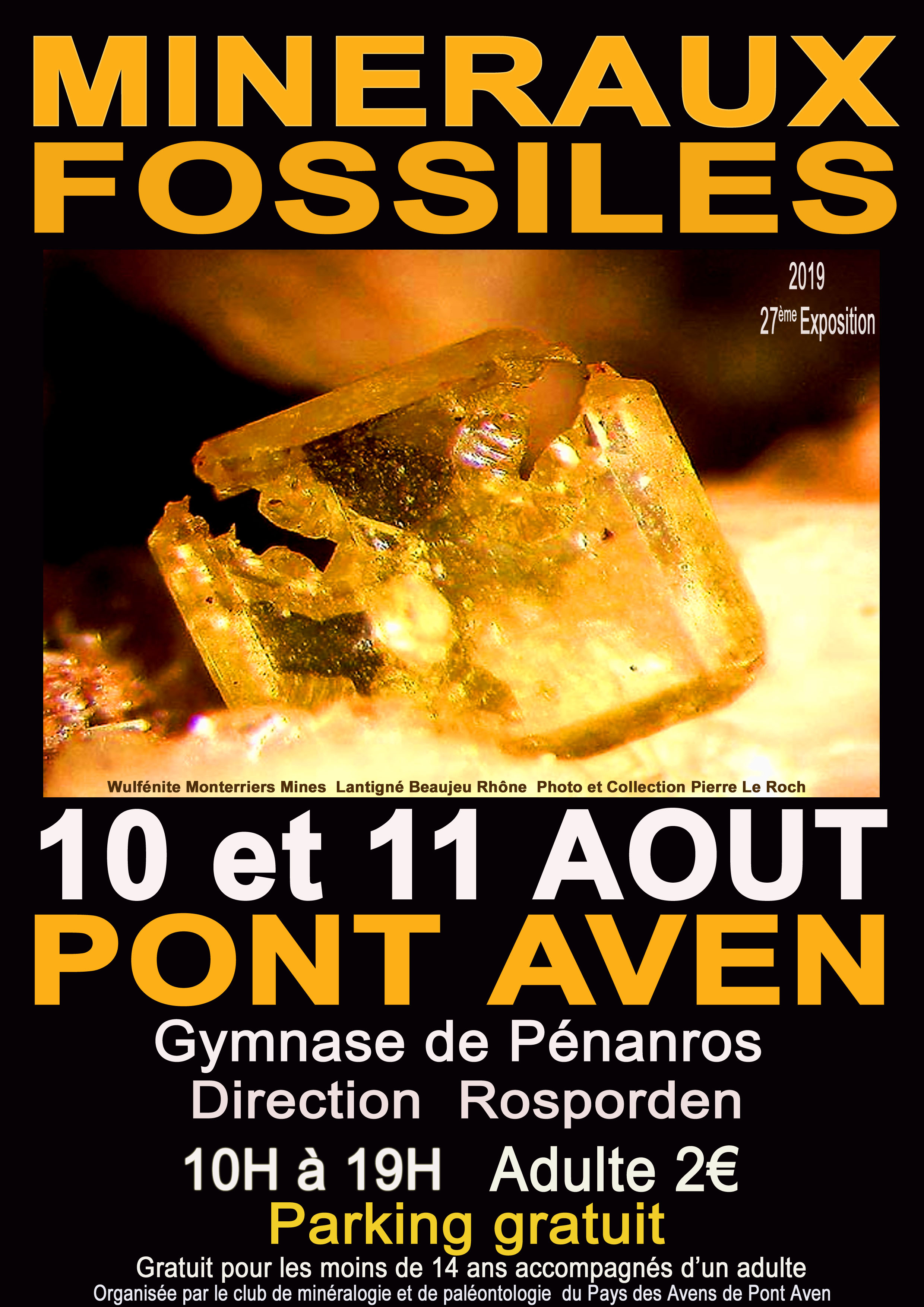 Exposition de fossiles et minéraux