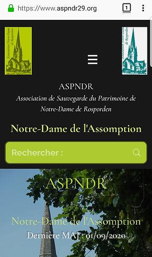 ASPNDR29
